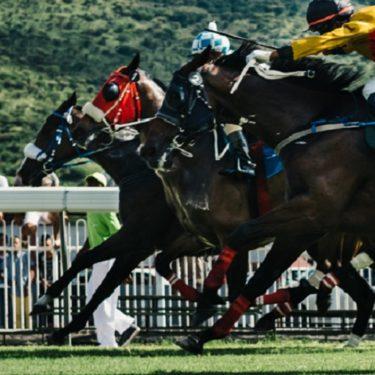 2020 JR&Nバーケットテレグラフ(G1)レース結果(ニュージーランド・トレンサム競馬場)